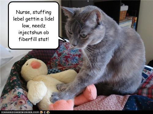 caption,captioned,cat,Command,diagnosis,dr tinycat,fiber,filling,injection,low,need,nurse,stat,stuffed animal,stuffing