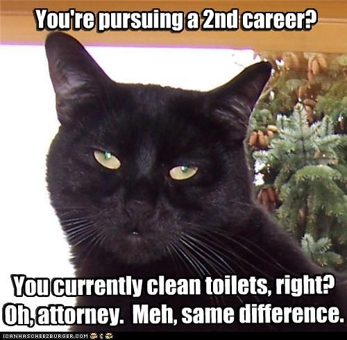 attorney,caption,captioned,career,cat,clean,meh,pursuing,same difference,sarcasm,second,snarky,toilets