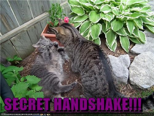 SECRET HANDSHAKE!!!