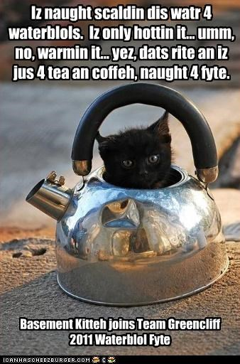 Iz naught scaldin dis watr 4 waterblols.  Iz only hottin it.. umm, no, warmin it.  Yez dats it an iz jus 4 tea an coffeh naught 4 fite.