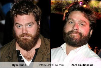 Ryan Dunn Totally Looks Like Zach Galifianakis