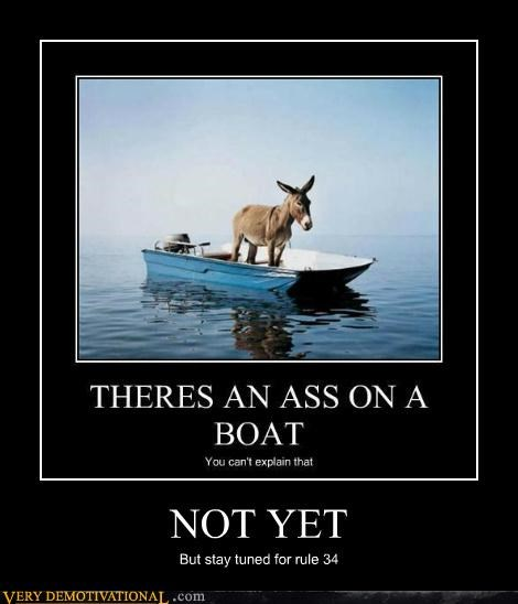 ass,boat,donkey,hilarious,Rule 34