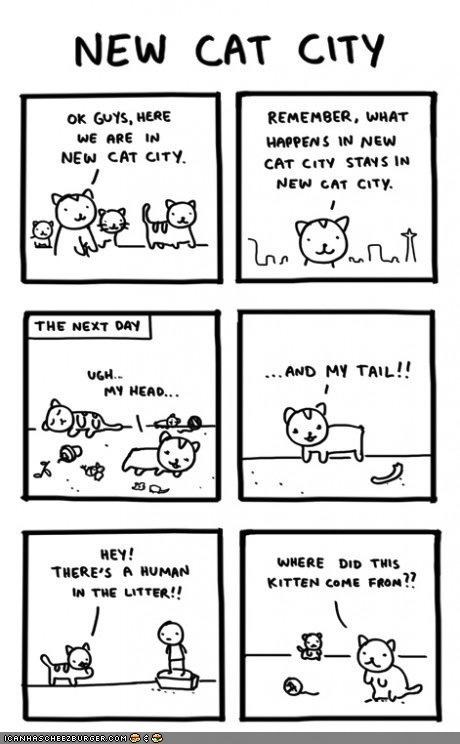 Kitteh Komic of teh Day: New Cat City