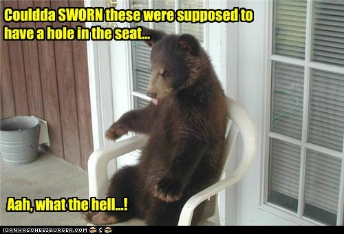 bathroom,bear,caption,captioned,chair,confused,could have,have,hole,oh well,pooping,seat,supposed,sworn,toilet,what the hell