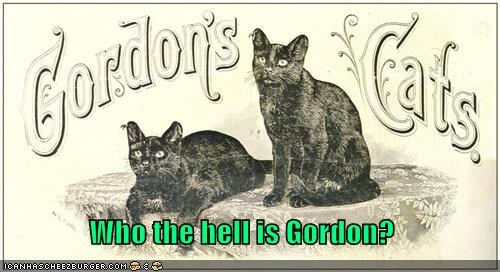Who the hell is Gordon?