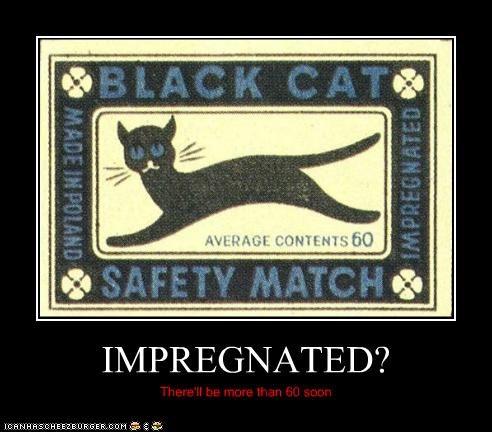 IMPREGNATED?