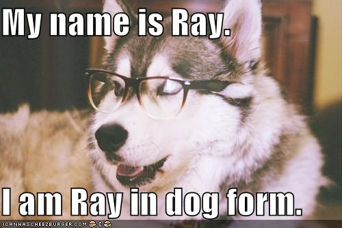 My name is Ray.   I am Ray in dog form.