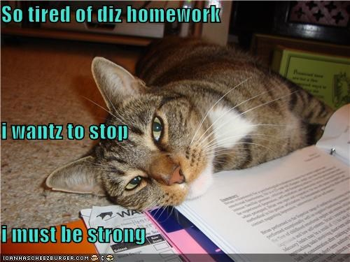 So tired of diz homework i wantz to stop i must be strong