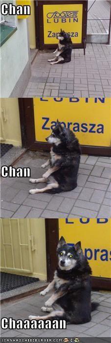 Chan Chan Chaaaaaan
