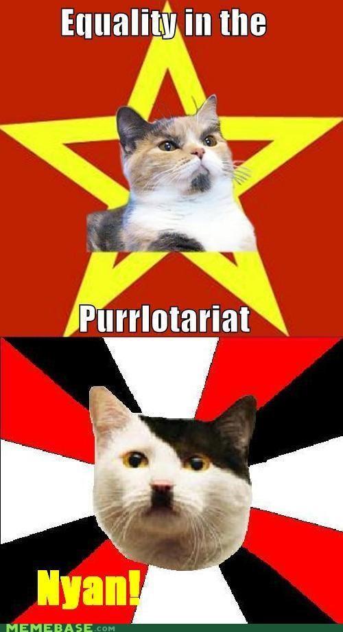 animemes,cat,equality,hitler,Lenin Cat,Reframe