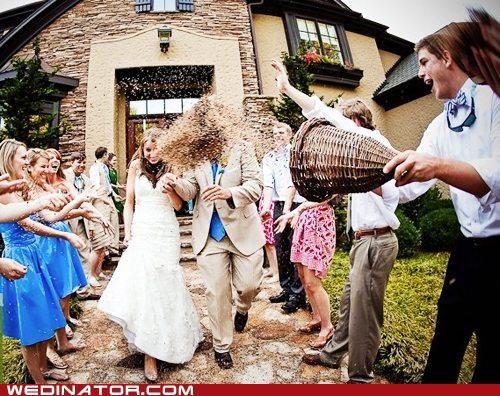 birdseed,bride,funny wedding photos,groom