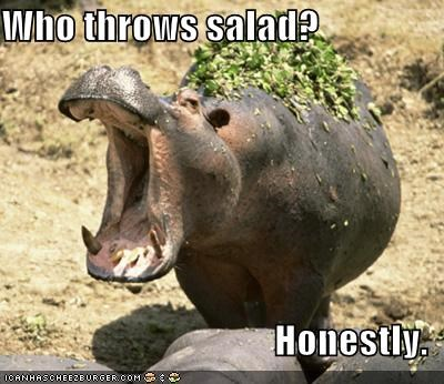 Who throws salad?  Honestly.