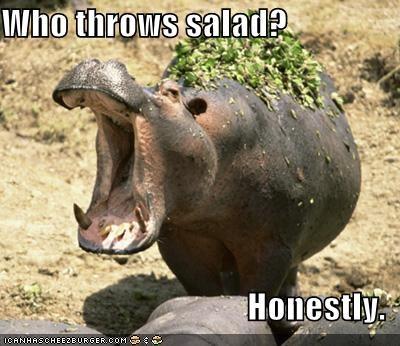 angry,austin powers,film,hippos,movies,salad
