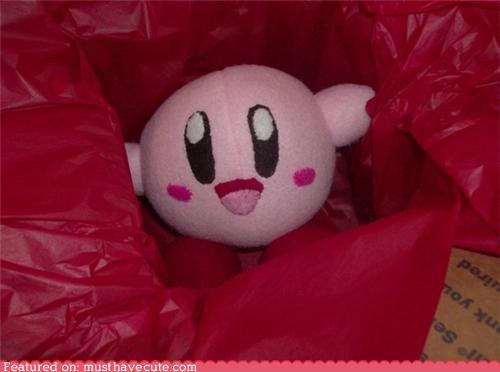 Kirby Plushy