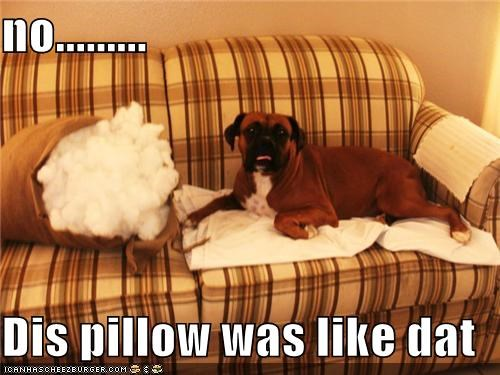 no.........  Dis pillow was like dat