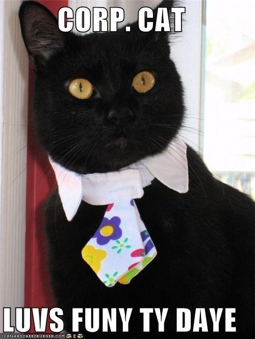 CORP. CAT   LUVS FUNY TY DAYE
