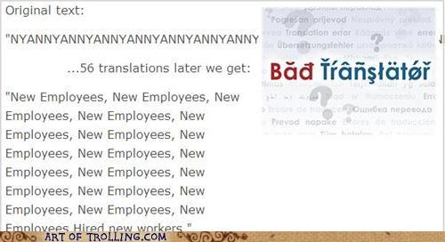 Bad Translator,new employees,nyan,nyancat