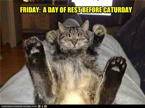 FRIDAY:  A DAY OF REST BEFORE CATURDAY