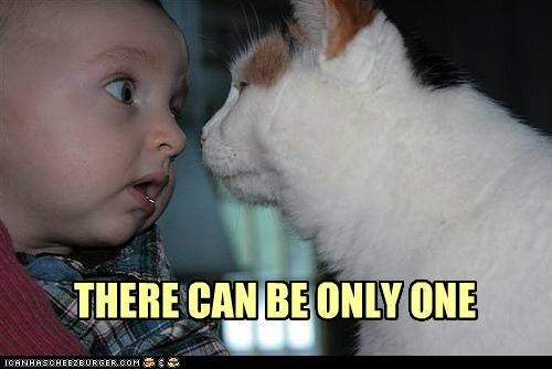 baby,be,can,caption,captioned,cat,human,one,only,Staring,there