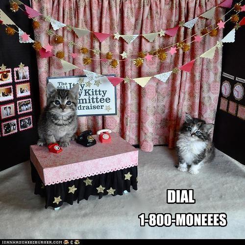 1-800-MONEEES