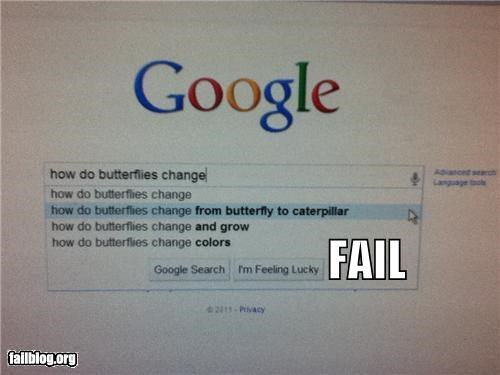 Autocomplete Me: How Do Butterflies Change...