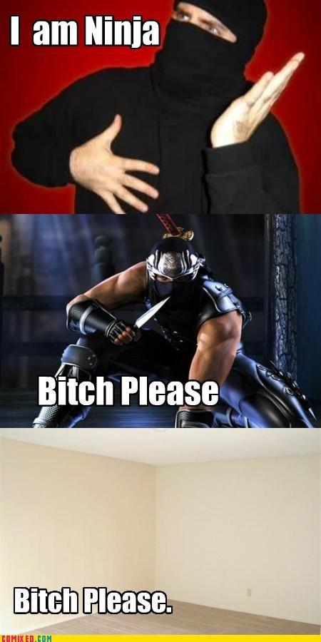 assassin,attack,betch please,ninja,the internets
