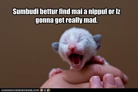 Sumbudi bettur find mai a nippul or Iz gonna get really mad.