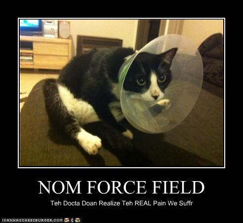 NOM FORCE FIELD