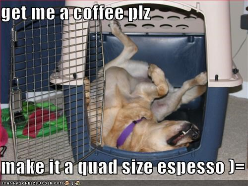 get me a coffee plz  make it a quad size espesso )=