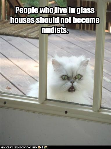 advice,best of the week,cannot unsee,caption,captioned,cat,do not want,glass,Hall of Fame,houses,live,nudists,people,shocked,Staring,window