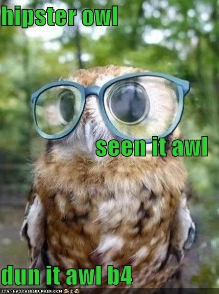 hipster owl seen it awl dun it awl b4