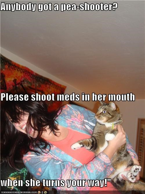 Anybody got a pea-shooter? Please shoot meds in her mouth when she turns your way!""