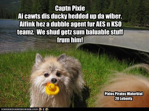 Ducky dubble agent capshured by pirates!