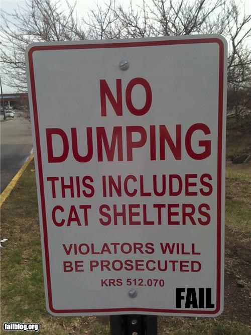 Oddly Specific: Cat Shelters Need To Be Let Down Easy