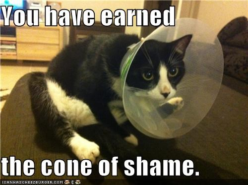 You have earned  the cone of shame.