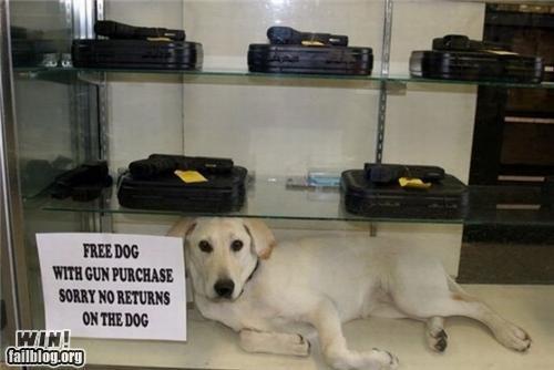 Free Dog WIN