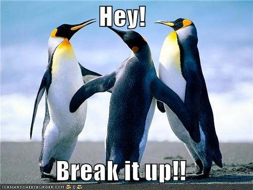 Hey!  Break it up!!