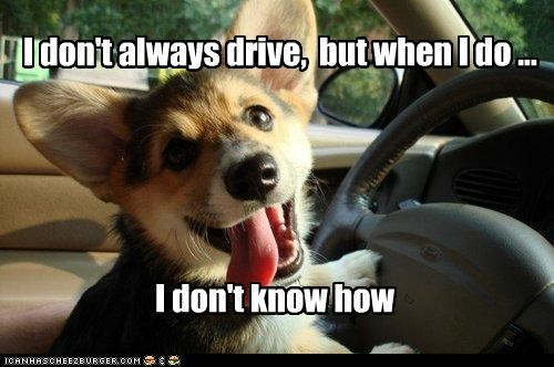 I don't always drive,  but when I do ...