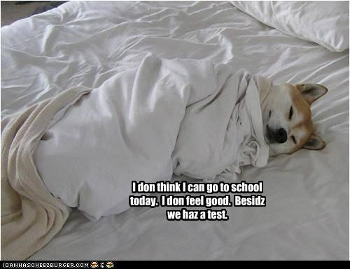 I don think I can go to school today.  I don feel good.  Besidz we haz a test.