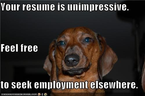 Your resume is unimpressive. Feel free to seek employment elsewhere.