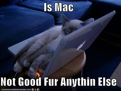 Is Mac  Not Good Fur Anythin Else