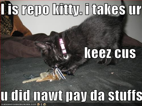 I is repo kitty. i takes ur keez cus u did nawt pay da stuffs