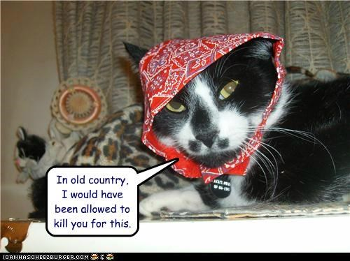 bandana,caption,captioned,cat,country,do not want,murder,old,old country,permission,reminiscing,upset