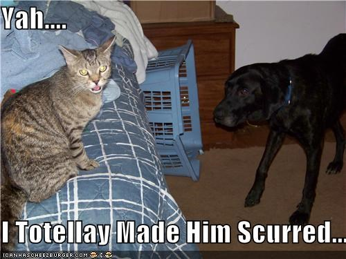 Yah....  I Totellay Made Him Scurred...
