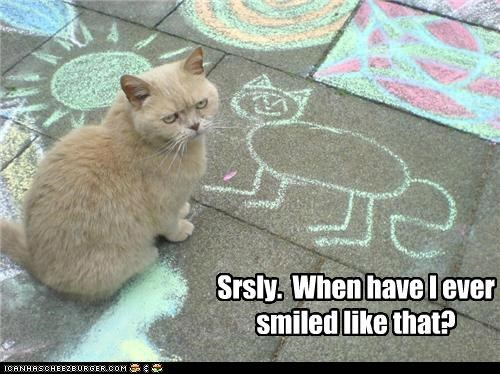 caption,captioned,cat,chalk,disapprove,disbelief,drawing,question,resemblance,seriously,sidewalk,smile,street,tabby