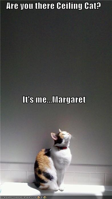 Are you there Ceiling Cat? It's me...Margaret