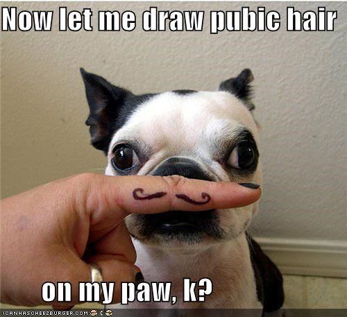 Now let me draw pubic hair         on my paw, k?