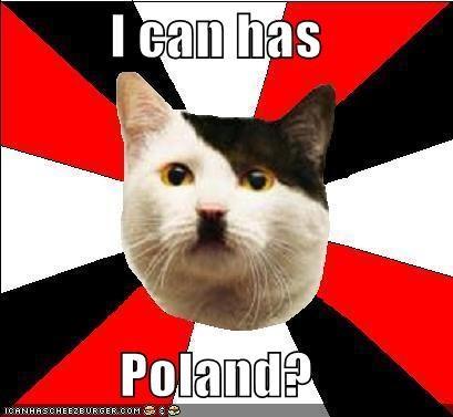 animemes,cheezburger,hamburg,hitler,Lenin Cat,nazi,poland,puns