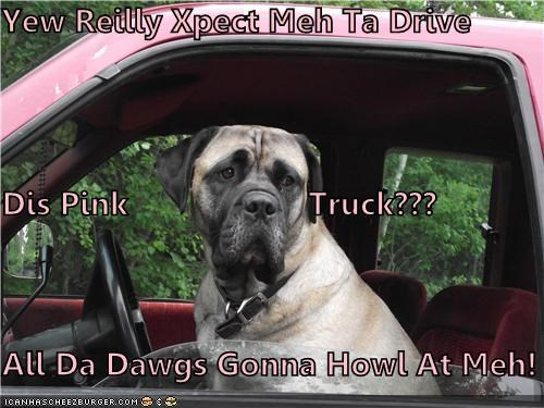 Yew Reilly Xpect Meh Ta Drive Dis Pink                    Truck??? All Da Dawgs Gonna Howl At Meh!