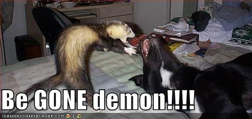 Be GONE demon!!!!
